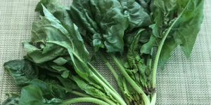 Healthy Anywhere biodynamic spinach