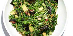 healthy organic kale sea vegetables salad in San Francisco Cafe Gratitude pop up